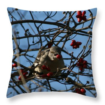 Throw Pillow featuring the photograph Picking Berries by Cathy Harper