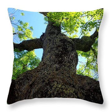 Pickity Tree Throw Pillow by Lois Lepisto