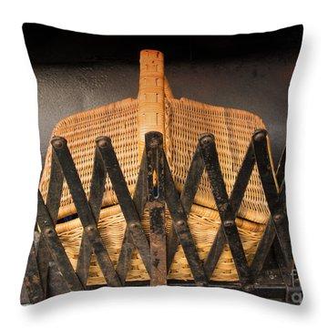 Picnic Anyone Throw Pillow