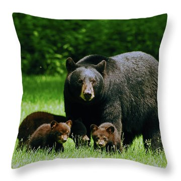 Picnic Crashers Throw Pillow