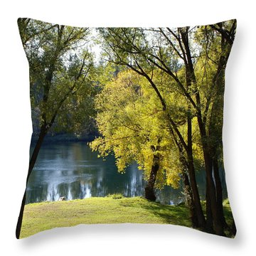 Throw Pillow featuring the photograph Picnic Spot On Spokane River by Ben Upham III