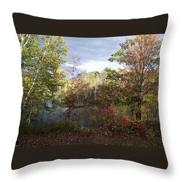 Picture Perfect Throw Pillow by David and Lynn Keller