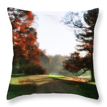 Picture Perfect Morning Throw Pillow by Bill Cannon