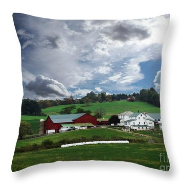 Picture Perfedt Throw Pillow