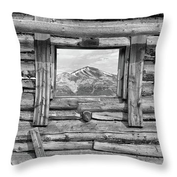 Throw Pillow featuring the photograph Picture Window #2 by Eric Glaser
