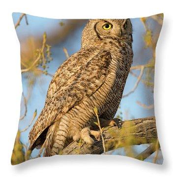 Picturesque Throw Pillow by Scott Warner