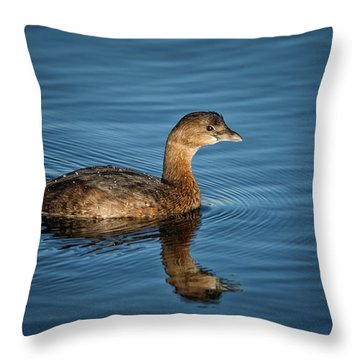 Throw Pillow featuring the photograph Pied Billed Grebe by Randy Hall