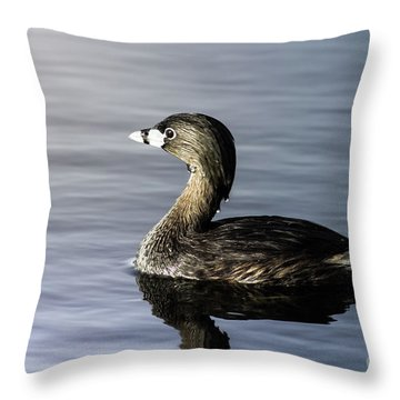 Pied-billed Grebe Throw Pillow by Robert Frederick