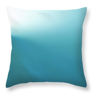 Throw Pillow featuring the photograph Pierce by Eric Christopher Jackson