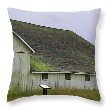 Pierce Pt. Ranch Study Throw Pillow