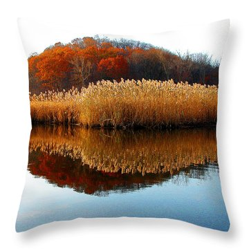 Piermont Backwater Throw Pillow