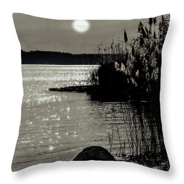 Throw Pillow featuring the photograph Piermont Hudson River View by Roger Bester