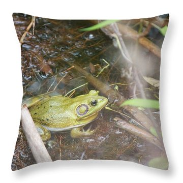 Pig Frog Throw Pillow