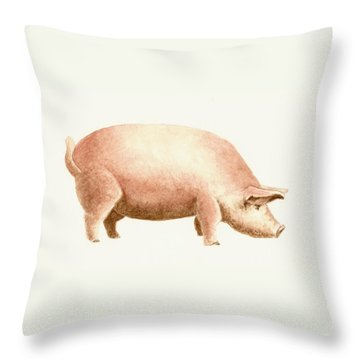 Pig Throw Pillow by Michael Vigliotti