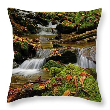 Pigeon Creek Cascades Throw Pillow