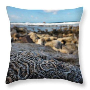 Pigeon Island Coral Saint Lucia St Lucia Brain Pattern Throw Pillow