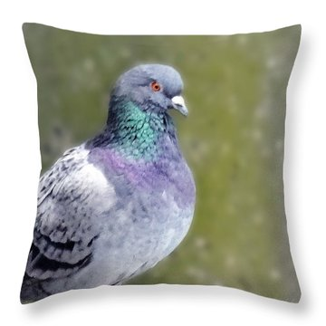 Pigeon Portrait Throw Pillow by Mikki Cucuzzo