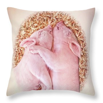 Throw Pillow featuring the photograph Piglet Love by Jennie Marie Schell