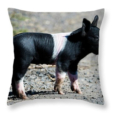 Piglet On The Loose Throw Pillow