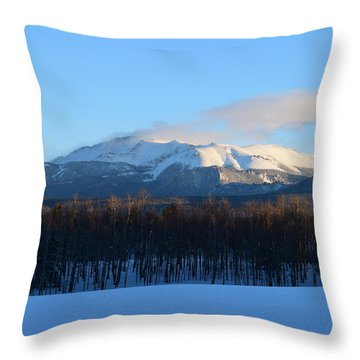 Pikes Peak From Cr511 Divide Co Throw Pillow