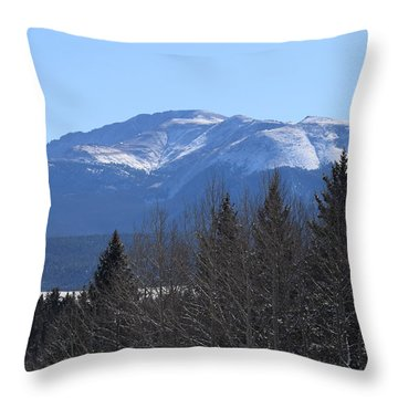 Pikes Peak Cr 511 Divide Co Throw Pillow