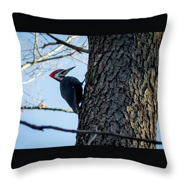 Throw Pillow featuring the photograph Pileated Woodpecker  by Ricky L Jones