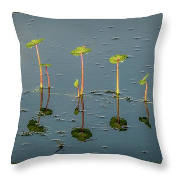 Pillars Of Life Throw Pillow