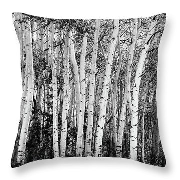 Pillars Of The Wilderness Throw Pillow by James BO Insogna