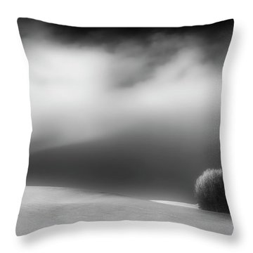 Pillow Soft Throw Pillow by Dan Jurak