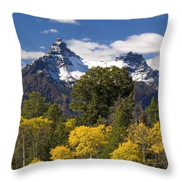 Pilot And Index Throw Pillow