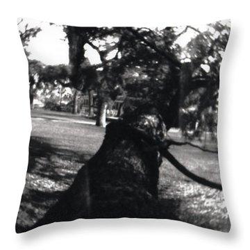 Pin Hole Camera Shot 1 Throw Pillow