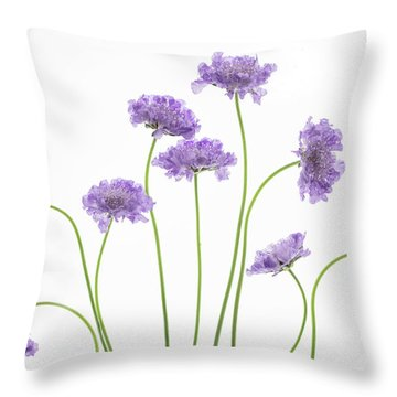 Throw Pillow featuring the photograph Pincushion #2 by Rebecca Cozart