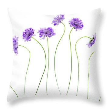 Throw Pillow featuring the photograph Pincushion #4 by Rebecca Cozart