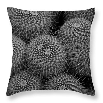 Pincushion Cactus In Black And White Throw Pillow by Michiale Schneider