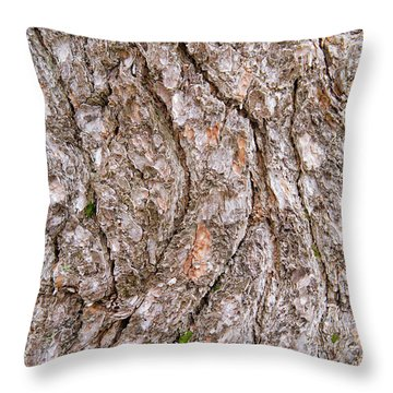 Pine Bark Abstract Throw Pillow by Christina Rollo