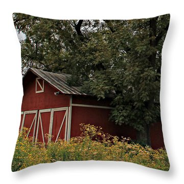 Pine Barn Throw Pillow