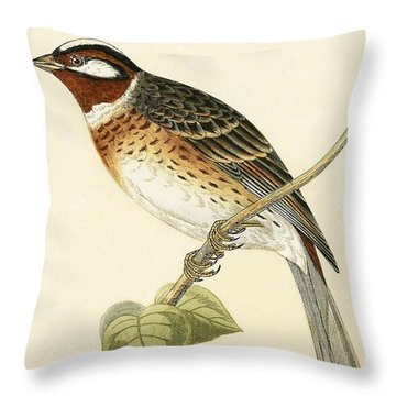 Pine Bunting Throw Pillow