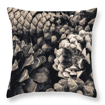 Pine Cone Study Throw Pillow by The Forests Edge Photography - Diane Sandoval
