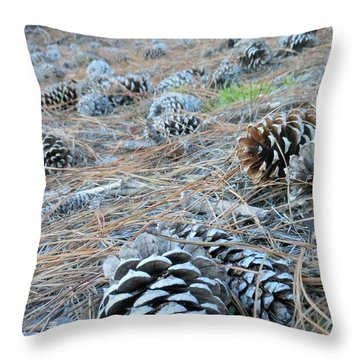 Throw Pillow featuring the photograph Pine Cones by Kay Gilley