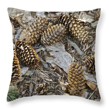 Pine Cones Throw Pillow by Michael Peychich