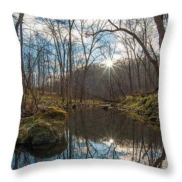 Throw Pillow featuring the photograph Pine Creek by Dan Traun