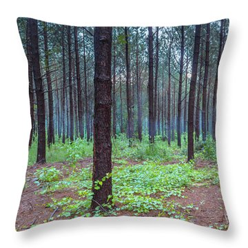 Throw Pillow featuring the photograph Pine Grove And Fog In Charlotte Nc Panorama by Ranjay Mitra