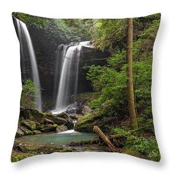 Pine Island Falls Throw Pillow