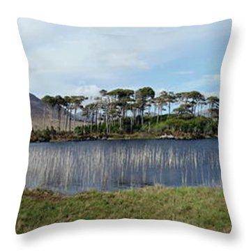 Pine Island Throw Pillow