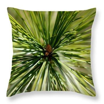 Pine Needles Throw Pillow