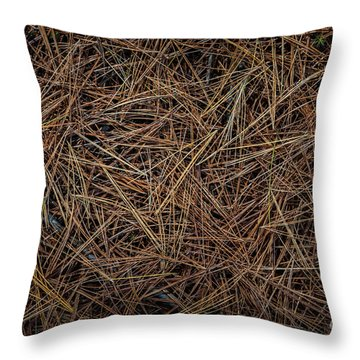 Throw Pillow featuring the photograph Pine Needles On Forest Floor by Elena Elisseeva