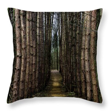 Pine Path  Throw Pillow