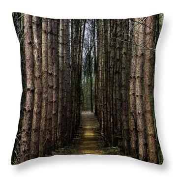 Pine Path  Throw Pillow