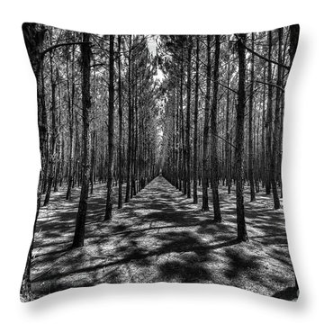 Pine Plantation Wide Throw Pillow