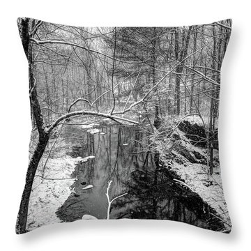 Pine Reflection On The Sheepscot Throw Pillow